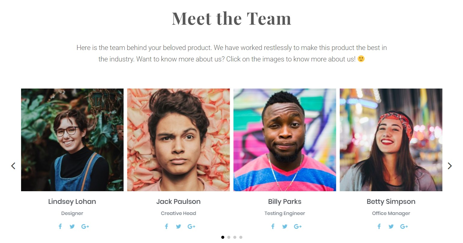 Team Page Popup