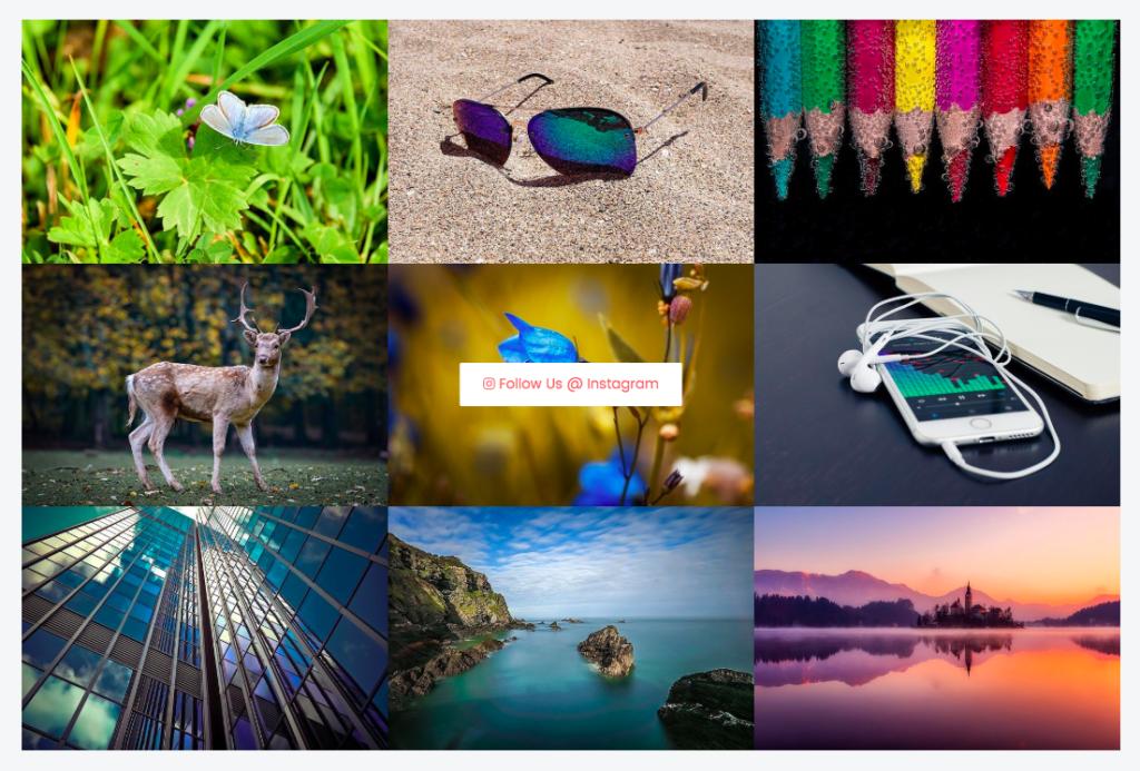 elementor-instagram-gallery-widget